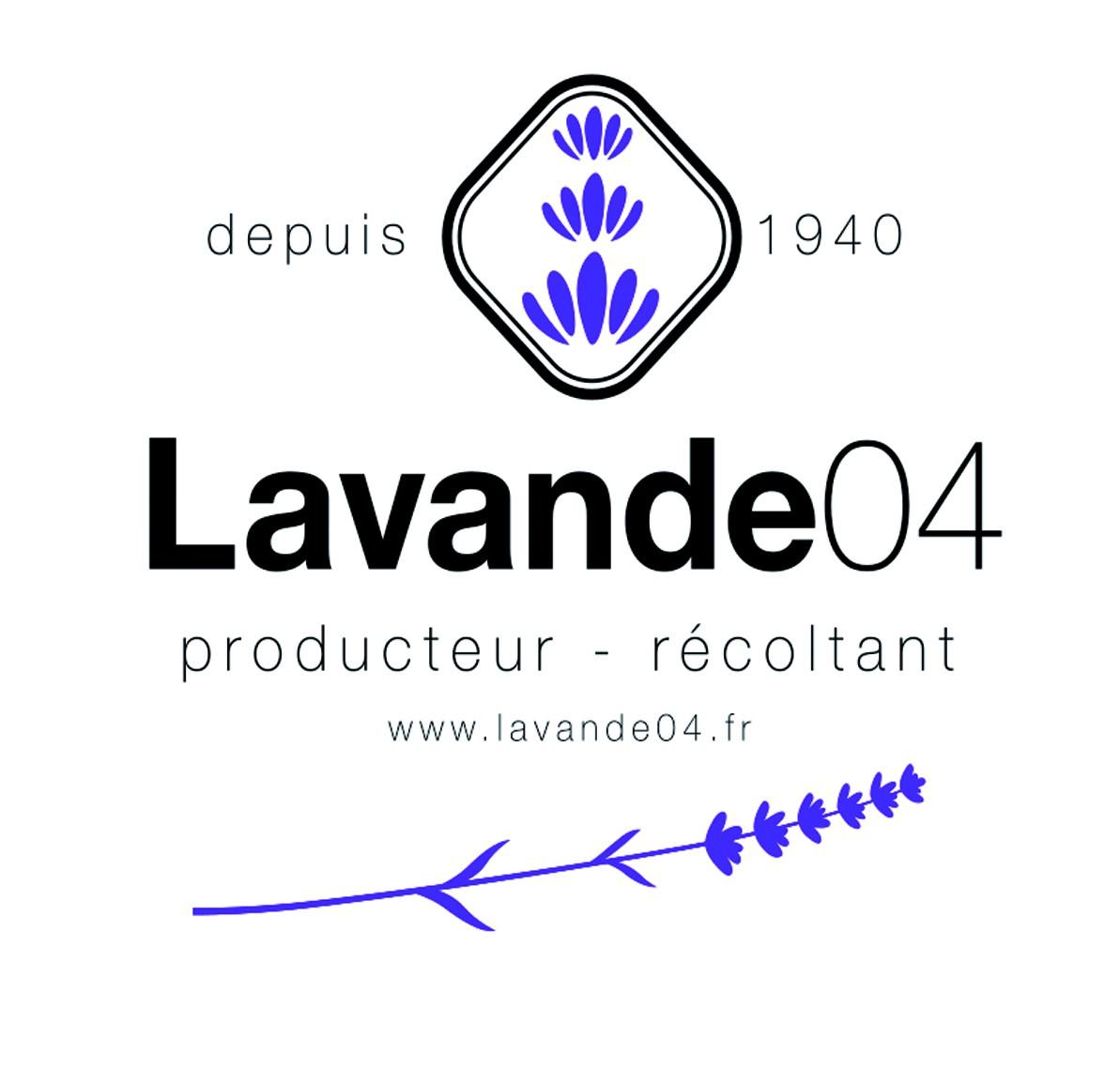 lavande04
